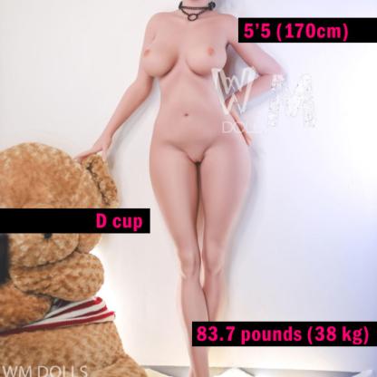 WM 170 cm D cup